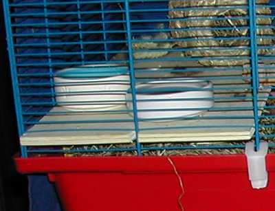 käfige für mäuse