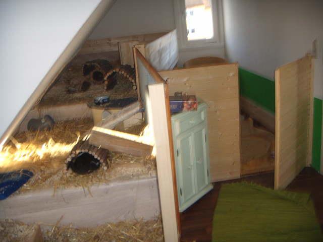 Geheimversteck Bauen kaninchen info meerschweinchen und kaninchen zimmer