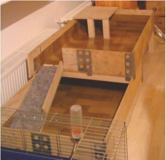 meerschweinchen info gehege. Black Bedroom Furniture Sets. Home Design Ideas