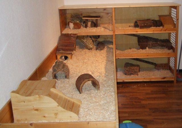 kaninchengehege bauen innen die besten 25 kaninchengehege innen ideen auf pinterest. Black Bedroom Furniture Sets. Home Design Ideas